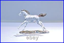 Swarovski 2014 SCS Foal Annual Edition Horse 5004729 Signed Brand New In Box